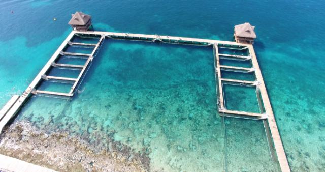 Anuncian reapertura de parque acuático en Estados Unidos