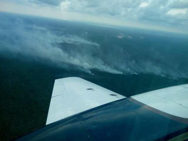 Incendio forestal en Bacalar capta la atención del gobierno federal