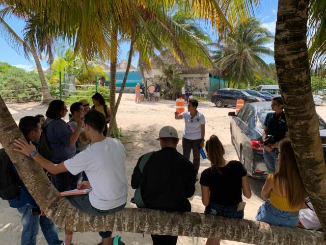 """Niños de Tulum se unen a """"batalla"""" legal para frenar devastación en Xcacel-Xcacelito"""