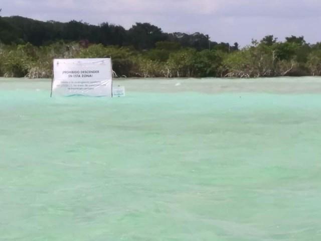 Preocupa en Bacalar daño que ocasiona el turismo a la laguna