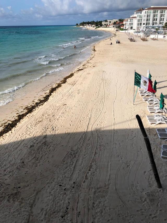 Gobierno de Quintana Roo da por concluida Temporada de Sargazo 2020
