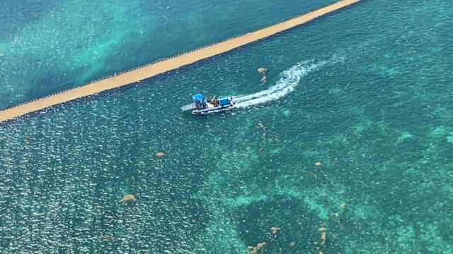 Secretaría de Marina recolecta más de 10 mil toneladas de sargazo en Quintana Roo hasta el 23 de mayo