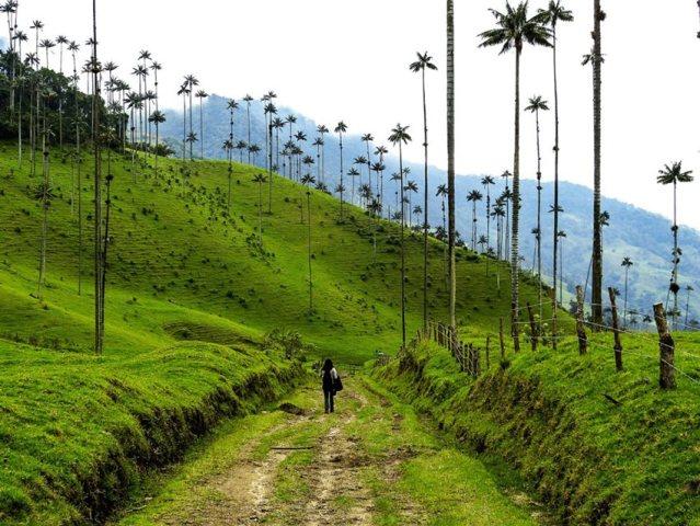 Aprueban dos proyectos de turismo especial a Gran Escala en Colombia