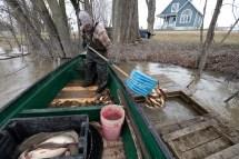 Le pêcheur entrepose ses prises dans des viviers près de son quai. Les poissons seront transformés à la dernière minute, pour plus de fraîcheur.