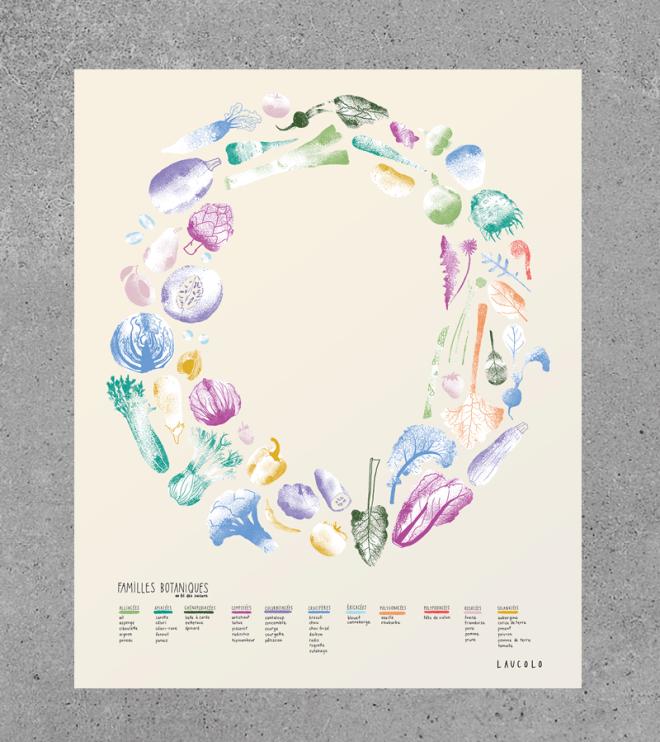 affiche familles botaniques