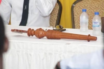 baton-at-launch-ceremony