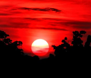 Sun with red sky and black silhouette Carinaasp