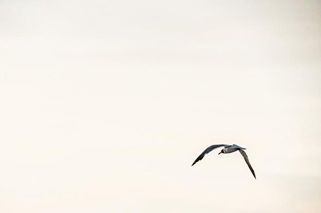 Skies - Carina Behrens, carinabehrens.com