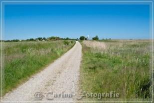 Der Weg ins Dorf