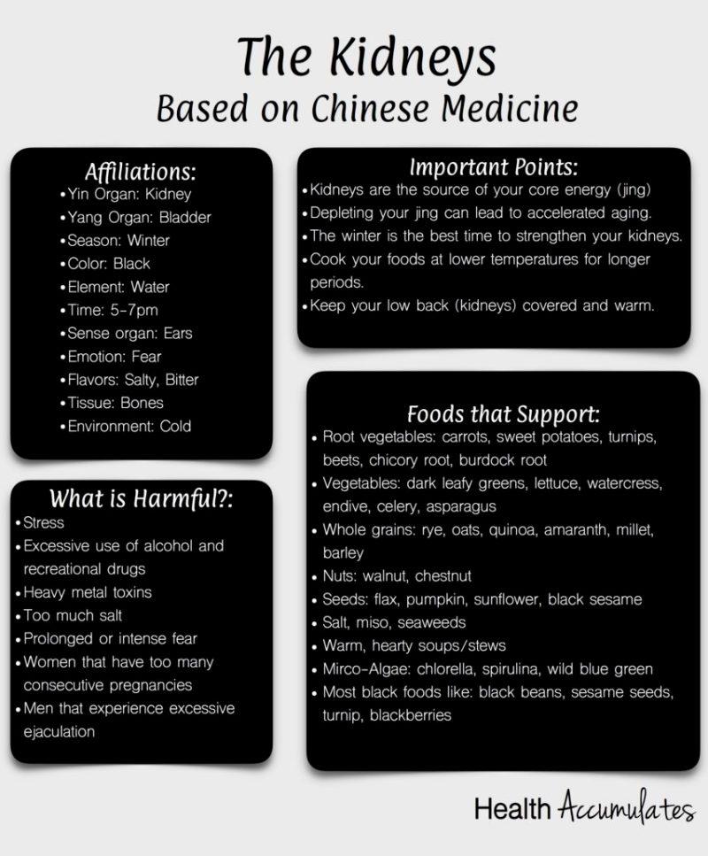 Chinese Medicine Kidneys