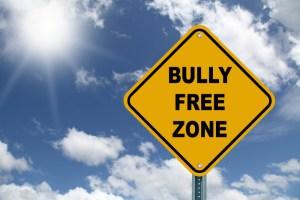 bully free zone