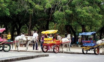 Cavalinhos na praça Xavier de Brito