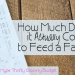 How Much Does it Actually Cost to Feed a Family