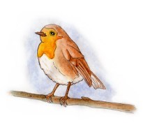 Xmas watercolours - Robin