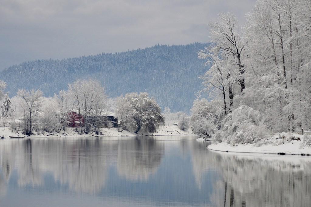 Winter on Shuswap River