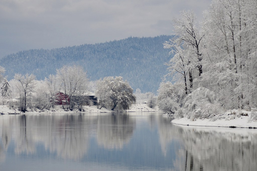 Winter on Shuswap River