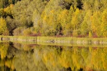 Heart Lake, Armstrong, BC