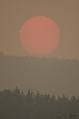 Sunset during wildfire season, shot from Armstrong, BC