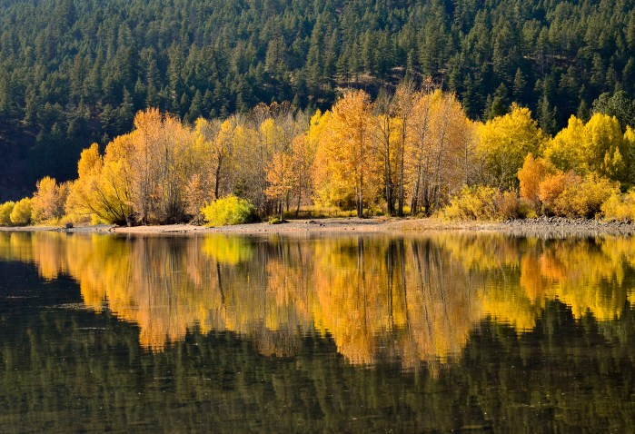 Fall Colours on Monte Lake, BC