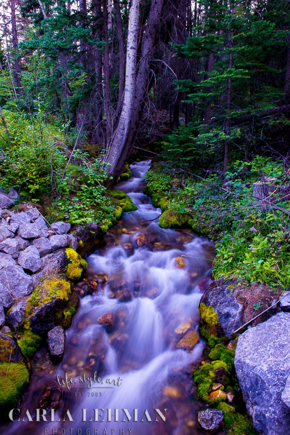 Jasper Mountain stream and waterfall.  Alberta Photographer