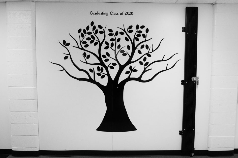 This year, the class tree remains empty Documentary Photo Essay