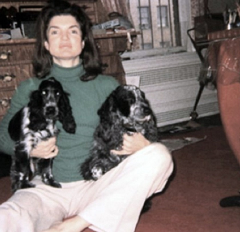 » The Dogs Of Jackie O Thirty Pictures Of Jacqueline