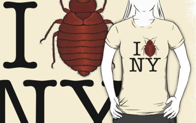 bedbugs love New-York