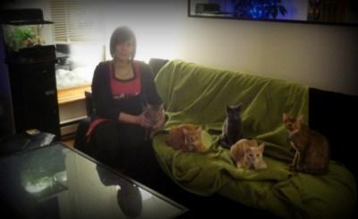 Un moment de bonheur suspendu dans le temps: les vacances de Noël avec nos chats