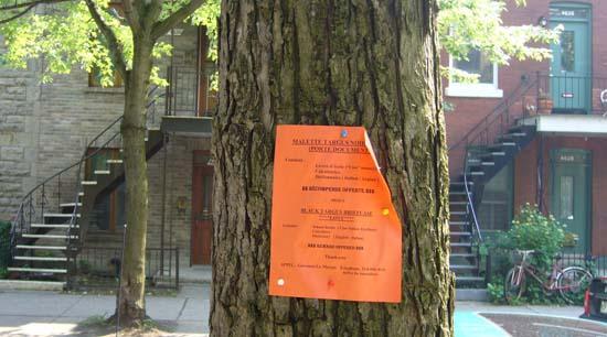 sale pub sur un arbre