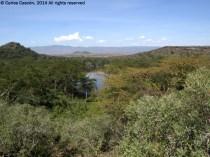 Vista del Crater Lake