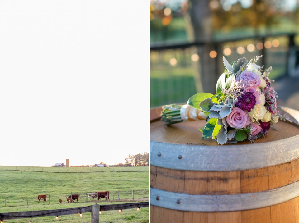 29a-oak-creek-farm-wedding-virginia-photographer-brittany-josh-1165