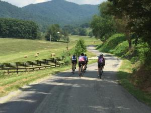Riding on Wade's Gap Road