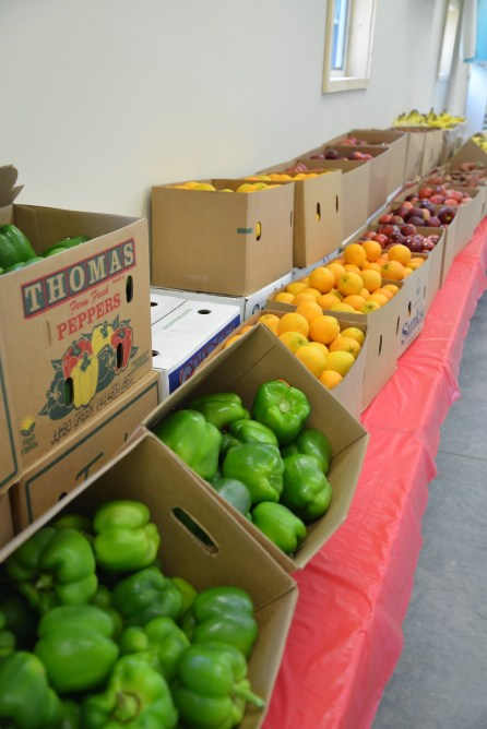 Fruit and More (2)