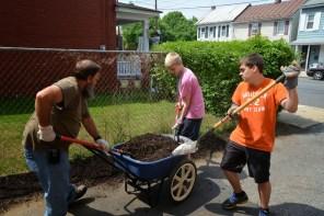 Lincoln Ave. weeding, planting & mulching