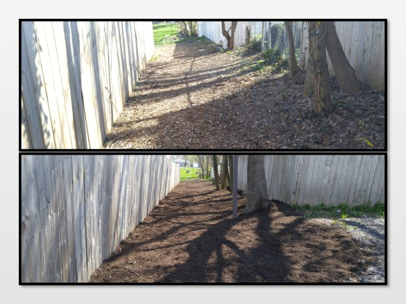 Frog Alley before and after