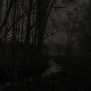 bissegem_nacht_mist-6901