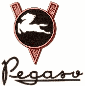 Pegaso3