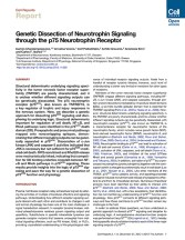 Genetic Dissection of Neurotrophin Signaling through the p75 Neu