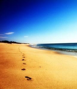 barefoot running osteon alaquas carlos lopez cubas