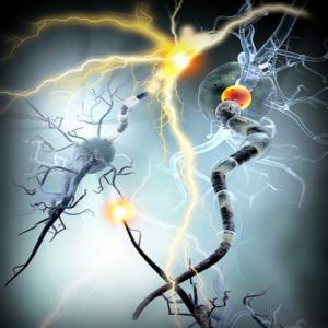 dolor neuropatico osteon impertinente irritabilidad latencia