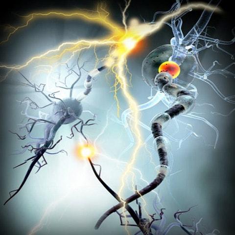 Resultado de imagen para neuroinflamacion niño