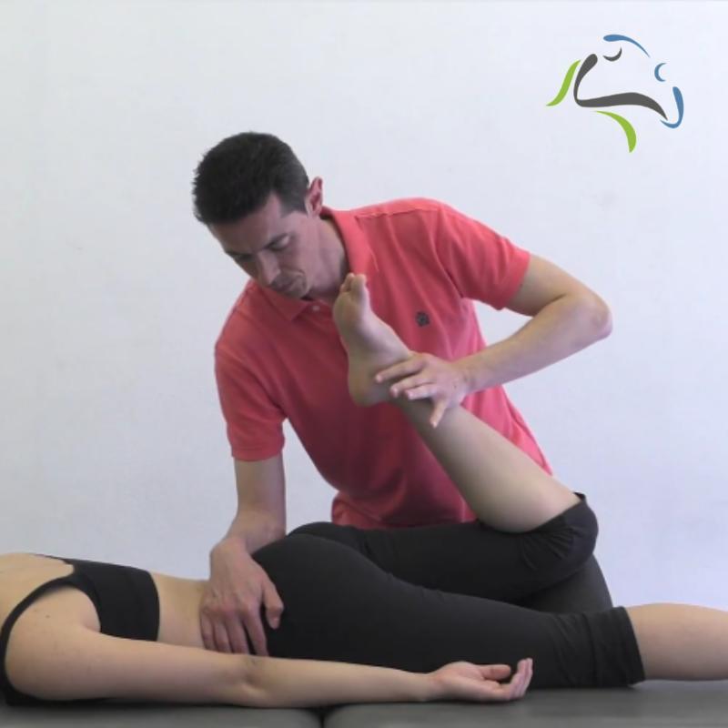 Flexión de rodilla en prono