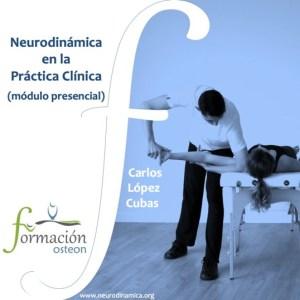 neurodinamica en la practica clínica modulo presencial
