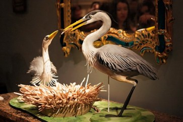 WSJ Feature On The Annual Wild Bird Fund Benefit Held At Carlton Hobbs