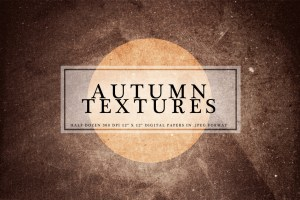Autumn Textures Digital Paper Pack by Carlyartdaily