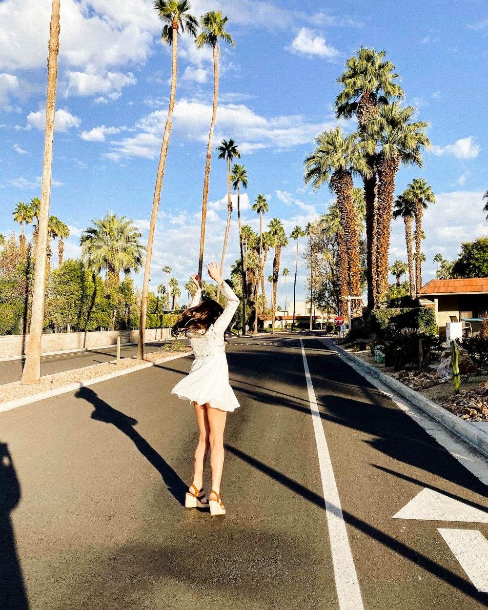 palmspringsblog (14)