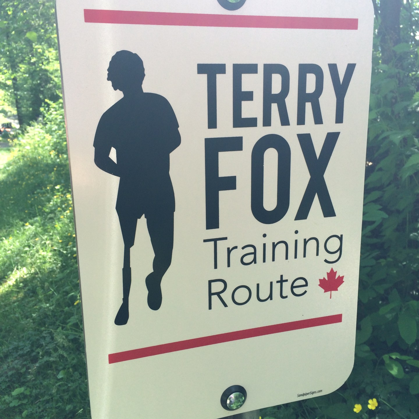Memories of Terry Fox