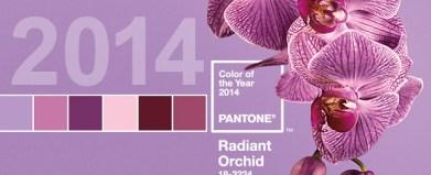 pantone_radiantorchid