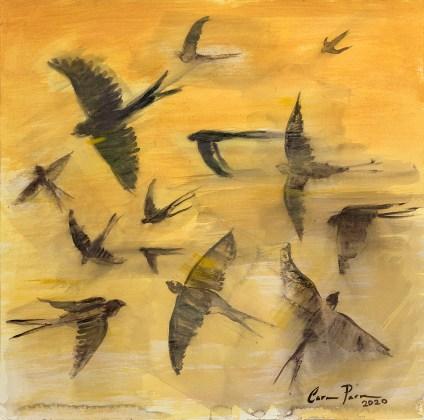 Serie Aves 10 Carmen Parra