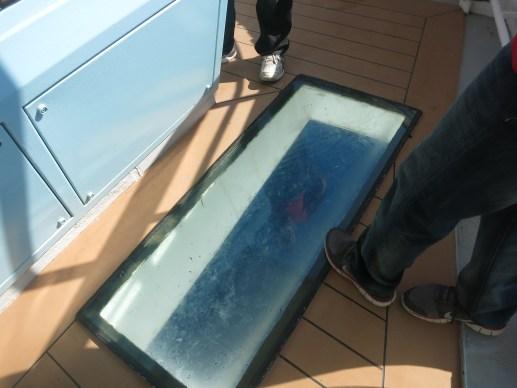 Flying Bridge Floor on Splendour of the Seas